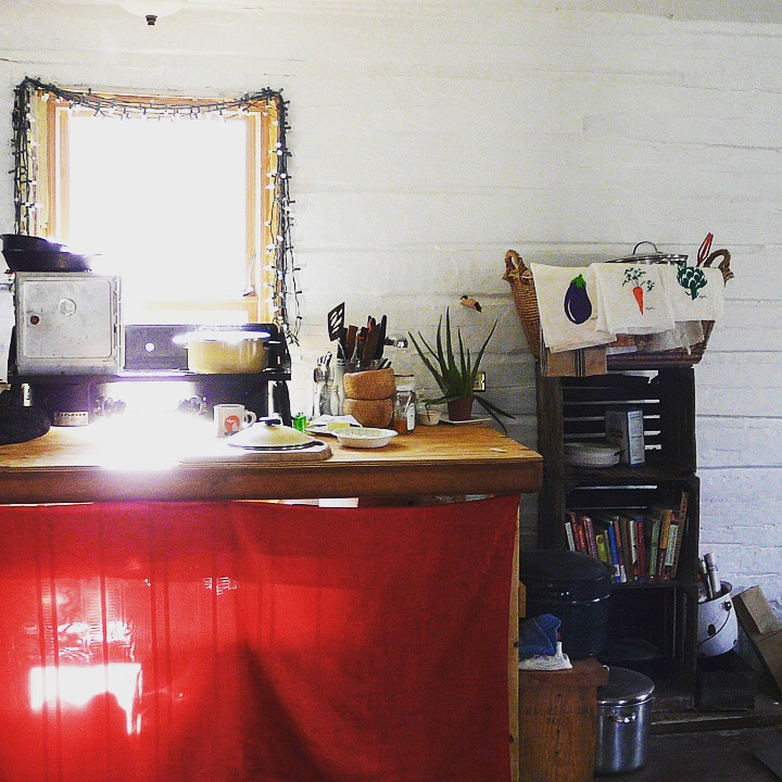 Tiny home-kitchen. Two-burner propane stove.