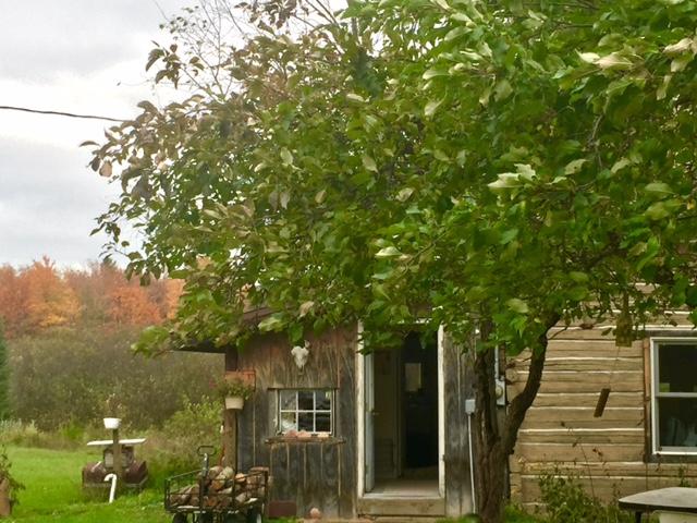 Home Cabin
