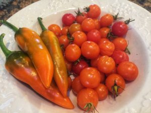 Chili peppers and sungold tomatoes