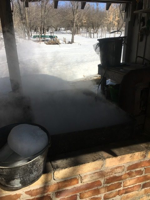 Boiling maple sap into syrup