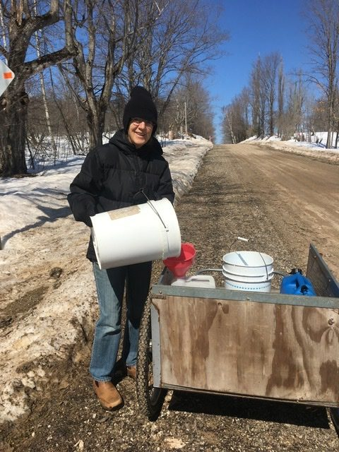Momma collecting maple sap